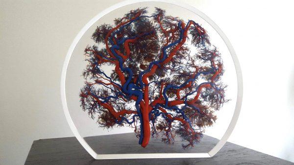 Levensboom van placenta