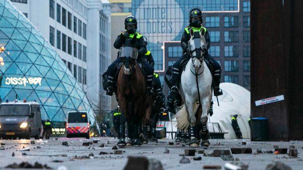 Politiepaard en agent die vielen tijdens Eindhovense rellen zijn ongedeerd_