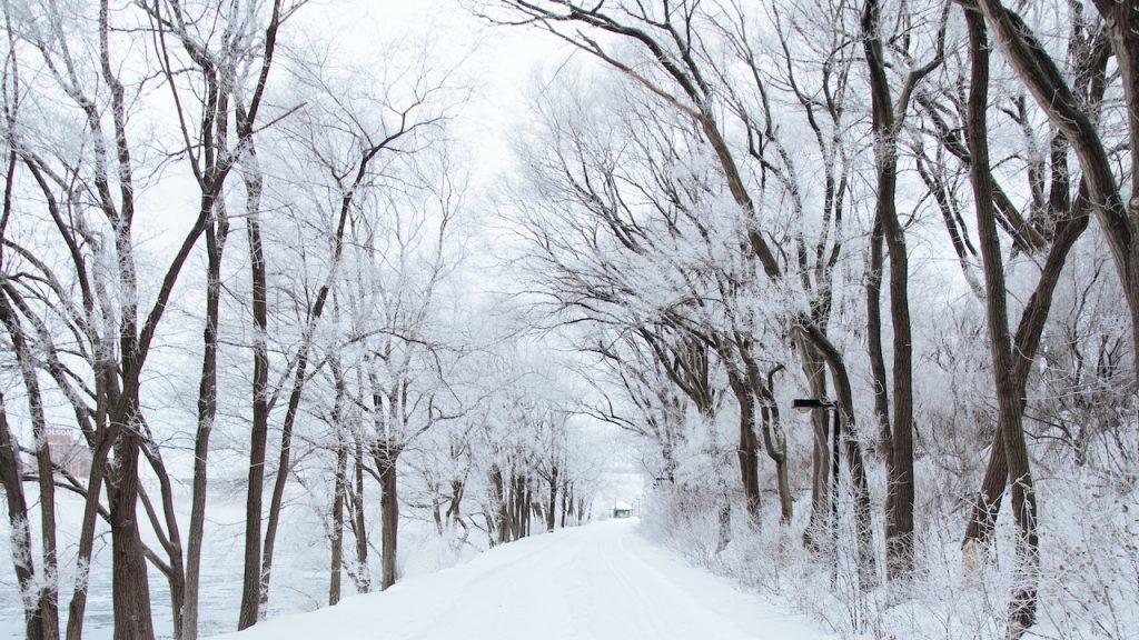 Collectief klappertanden: dikke kans op flink pak sneeuw dit weekend - LINDA.