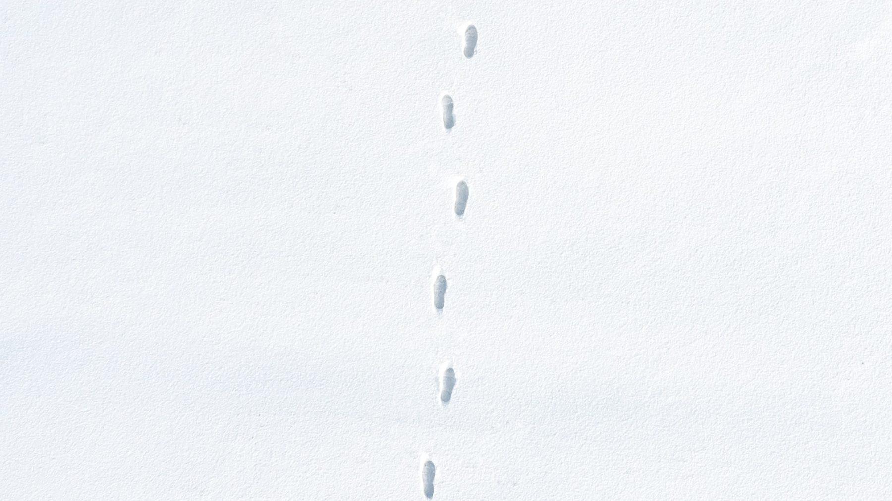 Met je blote voeten in de sneeuw? Dit effect heeft het op je lijf
