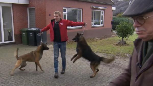 Mr Frank Visser doet uitspraak honden