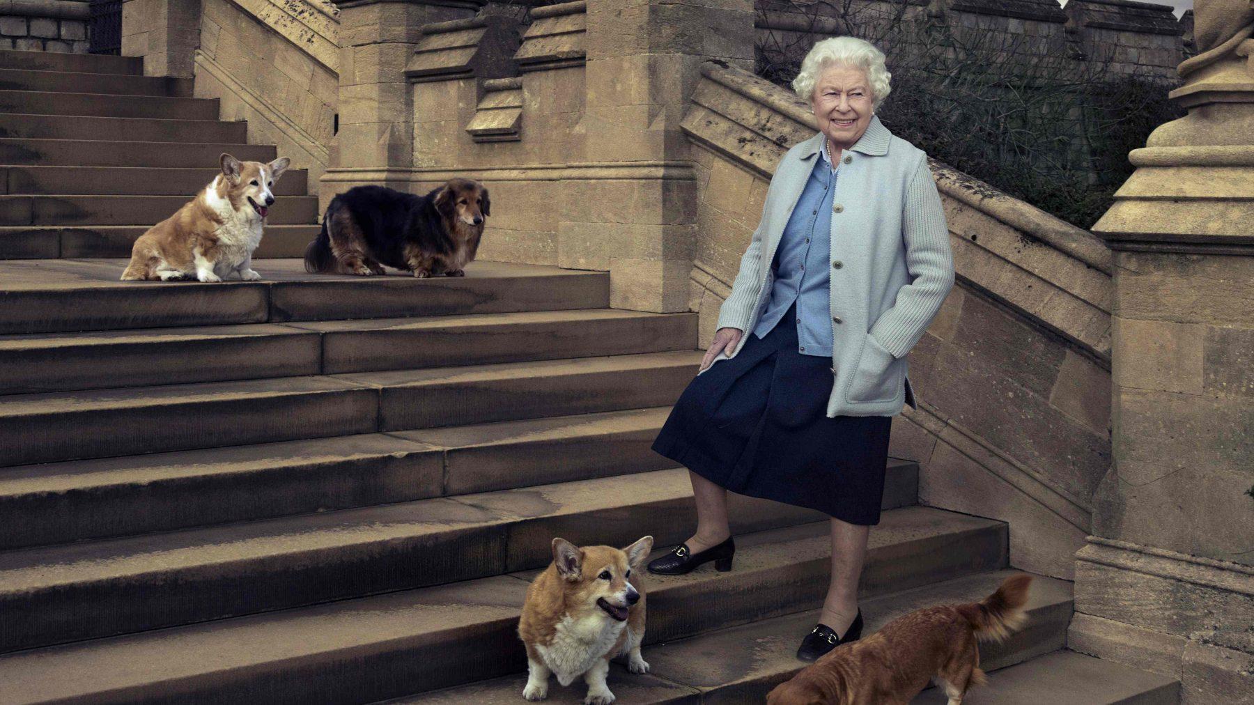 koningin Elizabeth honden