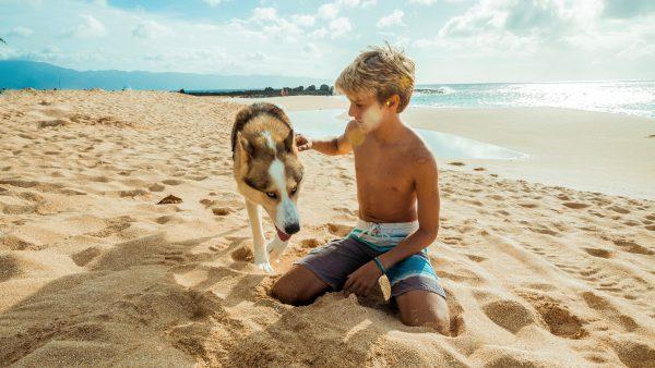 hond-jongen-samen-geadopteerd