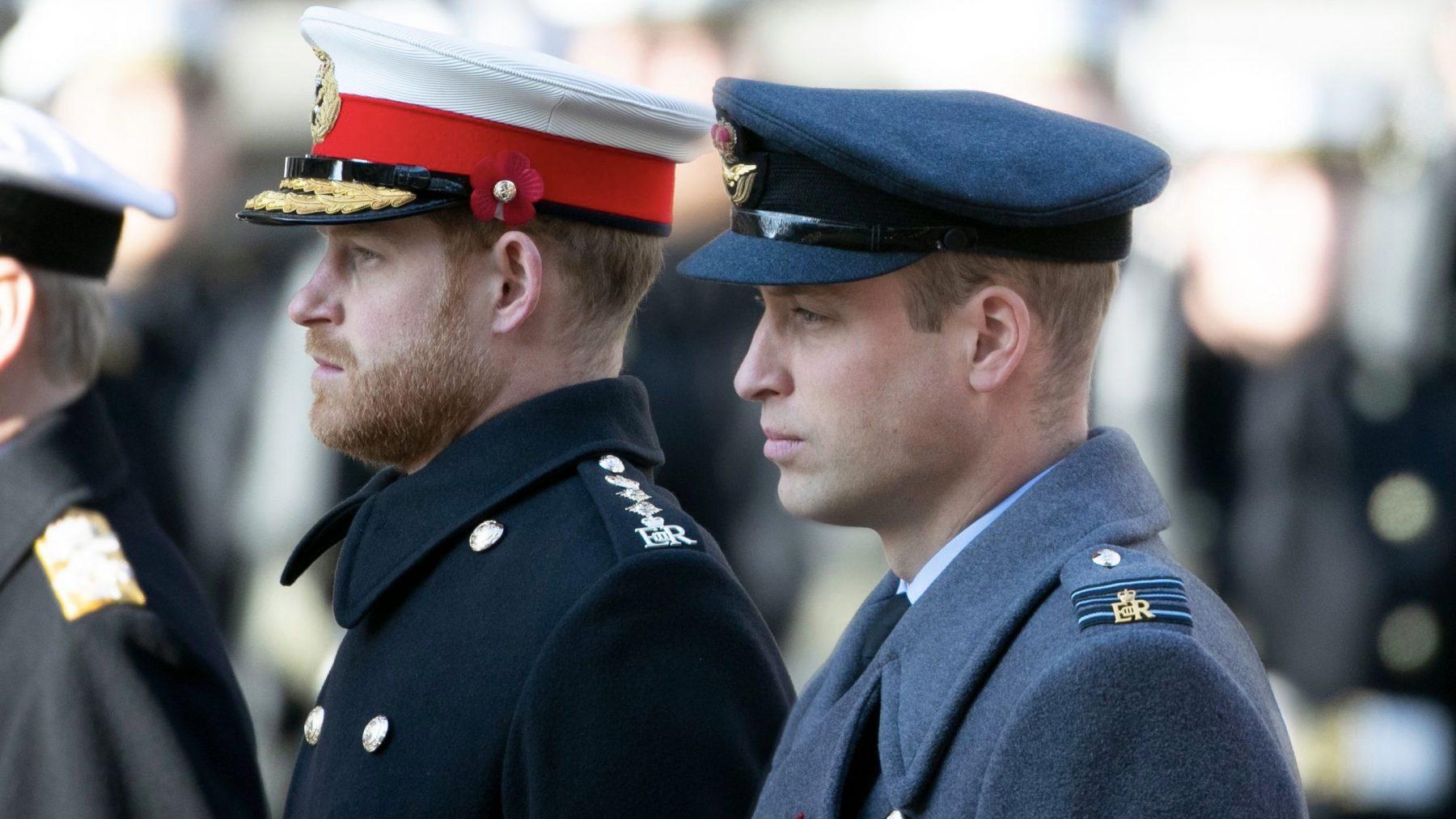 William en Harry niet naast elkaar achter kist prins Philip