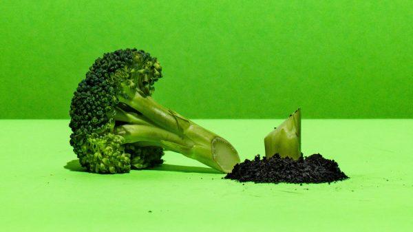 Albert Heijn zegt sorry voor broccoli-grap Songfestivalnummer_ 'Niet onze bedoeling'