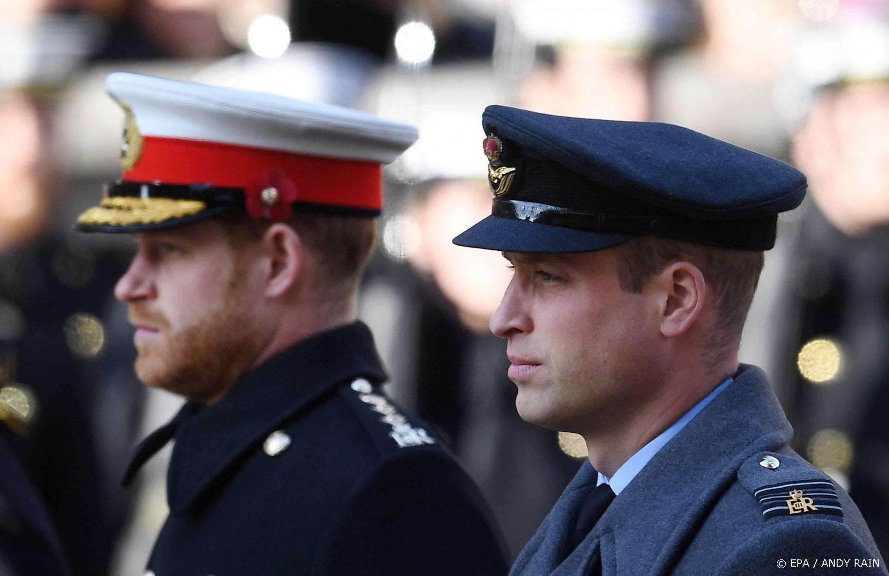 William en Harry geven apart een speech bij herdenking Diana