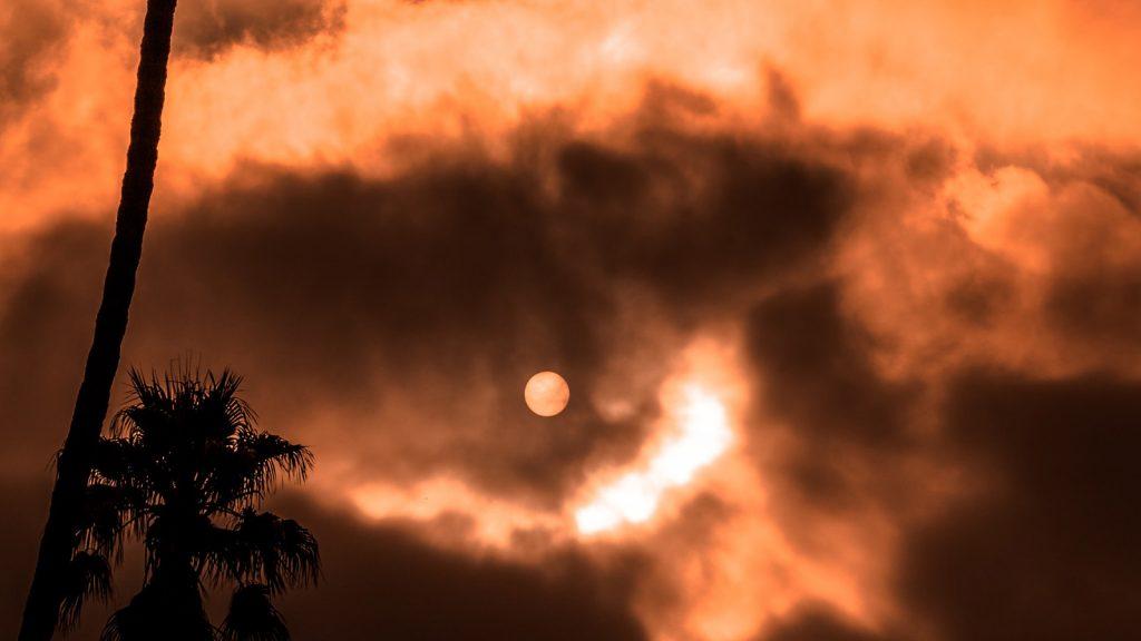 zonsverduistering veiligheid livestream