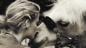 Thumbnail voor Tamar en kameel Einstein reizen samen door heel Nederland