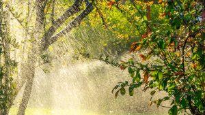 Thumbnail voor Rokjes en regenjassen: zomerse dagen, maar met flink wat gedonder
