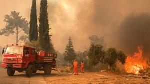 Thumbnail voor Turkije strijdt nog tegen grote bosbranden in populaire vakantiegebieden