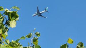 Tien Transavia-vliegtuigen vertrokken met passagiers maar zonder bagage