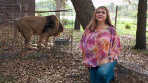 Thumbnail voor Aartsrivale Carole Baskin verkoopt dierentuin van Joe Exotic: 'Géén Tiger King-taferelen'