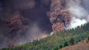 Thumbnail voor Vulkaan barst uit op Canarische eiland La Palma, Nederlandse toeristen niet in gevaar