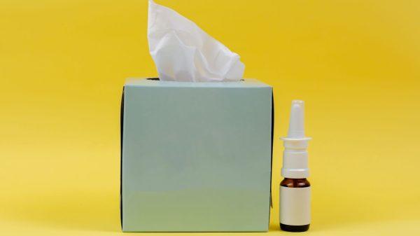 Vragen en antwoorden over de griep