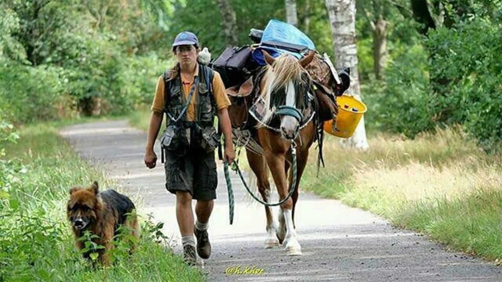 Tamarinde trekt rond met haar paard, hond en duif: 'Standaard leven is saai'