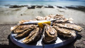 oesters-rapen-plukken-hoe